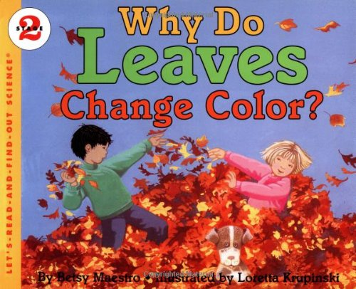 why-do-leaves-change-color